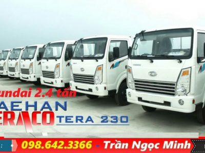 Xe tải hyundai 2.4 tấn Daehan Tera 230